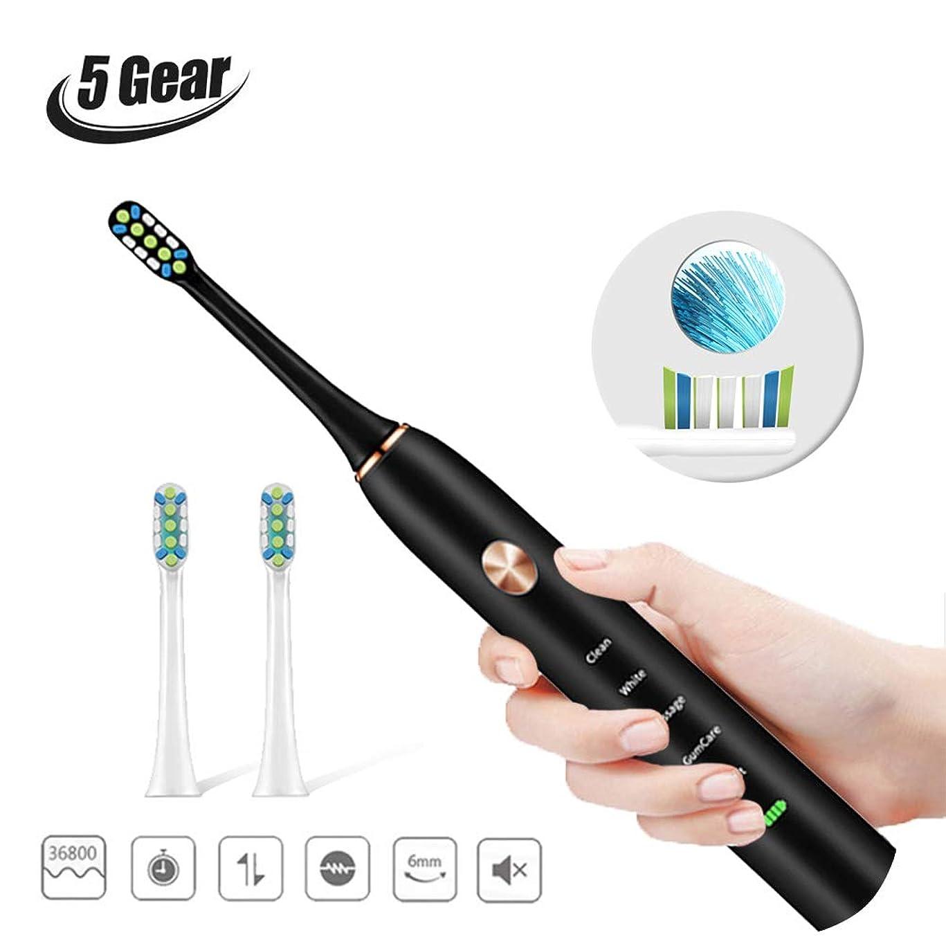 議論する将来の錫音波歯ブラシ 電動歯ブラシ 歯ブラシ USB充電式 ブラック ソニック IPX68防水 4時間がかかって30日に使用 5つのモード USB充電 替えブラシ3本 すきま磨きブラシ付き 口内ケア 携帯 歯磨き デンタルケアBlack