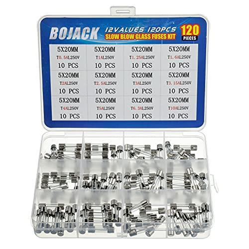 BOJACK 12 Values 120 pcs Slow Blow Glass Fuses Assortment Kit 5x20mm 250V T0.5A 1A 1.25A 1.6A 2A 2.5A 3A 3.15A 4A 5A 6.3A 10A packag in a Clear Plastic Box