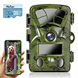 Ctronics Trail Camera WiFi 4K 20MP, Wildlife Game Camera with Night Vision Motion Activated Waterproof for Outdoor Deer Hunting Wildlife Monitoring(32GB SD Card Included)