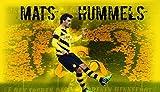 24inch x 14inch/61cm x 35cm Mats Hummels Silk Poster