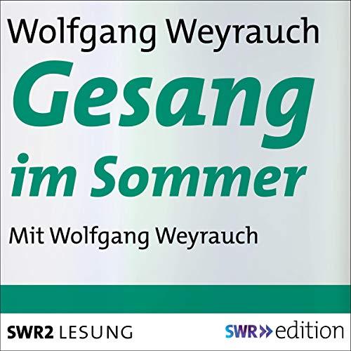 Gesang im Sommer audiobook cover art