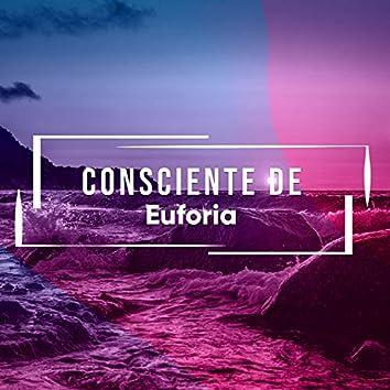 Consciente de Euforia