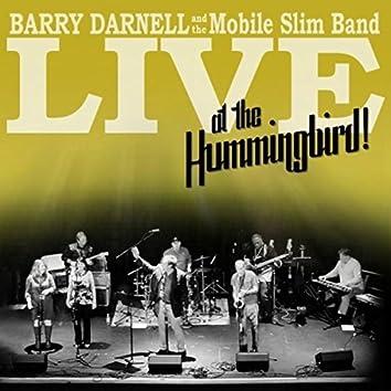 Live At the Hummingbird!
