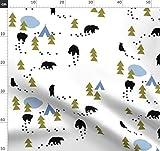 Bären, Schwarzbär, Bär, Grizzlybär, Zelten, Alaska,