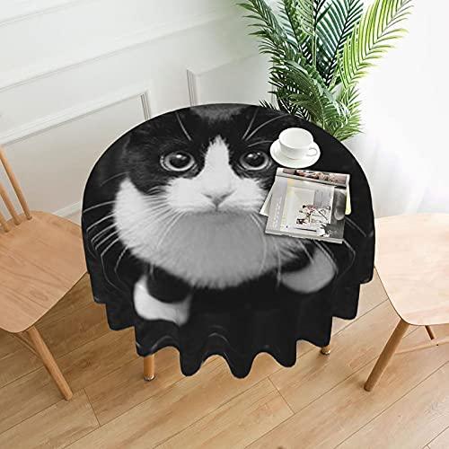 Lack - Manteles redondos de gato blanco para mesa circular decoración del hogar para exteriores e interiores, cocina, comedor, fiesta, fiesta de 60 pulgadas