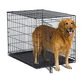 New World 42 Inch Folding Metal Dog Crate Includes Leak-Proof Plastic Tray  Dog Crate Measures 42L x 30W x 28H Inches Fits Large Dog Breeds