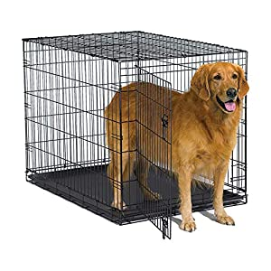 """New World 42"""" Folding Metal Dog Crate, Includes Leak-Proof Plastic Tray; Dog Crate Measures 42L x 30W x 28H Inches, Fits Large Dog Breeds"""