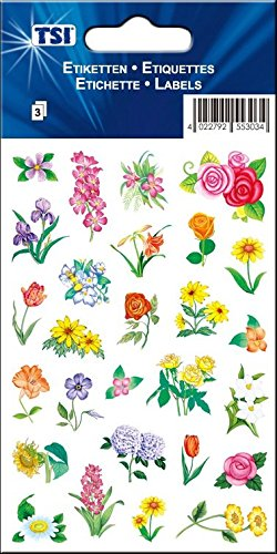 TSI 55365 Schmuck-Etikett Blumen, Druck auf Papier
