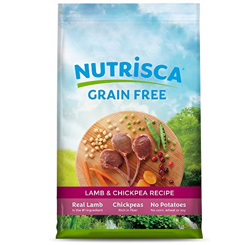 What is the Best Grain Free Dogs Food on the Market?