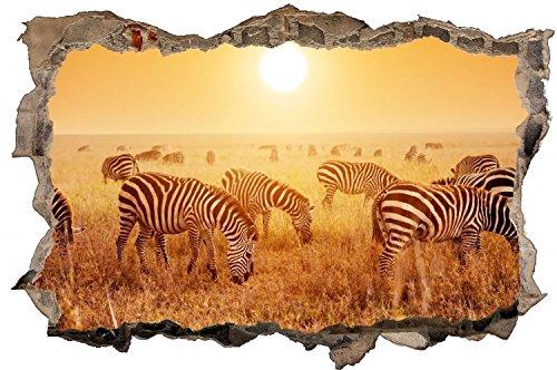 Zebra Herde Afrika Safari Wandtattoo Wandsticker Wandaufkleber D0296 Größe 100 cm x 150 cm