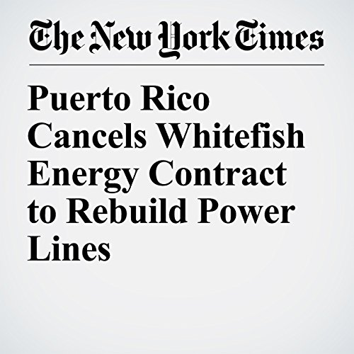 Puerto Rico Cancels Whitefish Energy Contract to Rebuild Power Lines copertina
