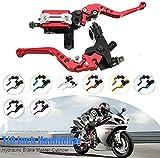 Accesorios de la motocicleta Motocicleta 7/8 CNC Freno delantero delantero Motor de embrague hidráulico Cilindro Set Depósito, nombre: Material robusto blanco, (Color: Oro), Color: Rojo (Color: Azul)