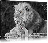 liebevolle Löwe kuschelt mit kleinem Jungtier