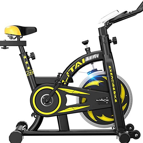 JXH Indoor Cycling Exercise Bike, Direct Belt Driven 30Kg Flywheel Magnetic Resistance with Comfortable Seat Cushion, Safe Professional Exercise Bike Best Choice Weight Lose