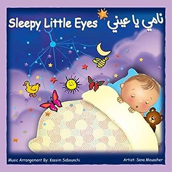 Sleepy Little Eyes