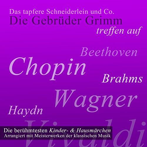 Das tapfere Schneiderlein und Co. audiobook cover art