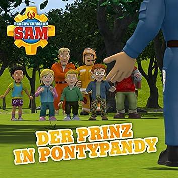 Folge 137: Der Prinz in Pontypandy