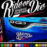 車 ステッカー かっこいい スポーツ バイナルグラフィック デカール 車用 カスタム ワイルドスピード系 6色 ride_b01 (ホワイト×レッド)