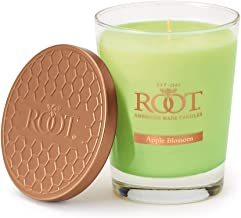 Best apple blossom candle Reviews