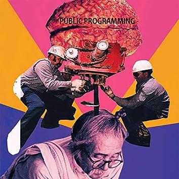 Public Programming