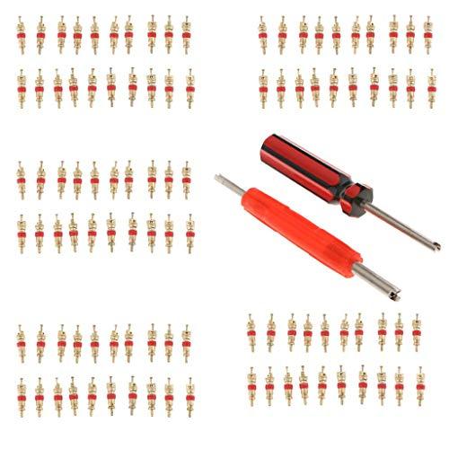 YAeele 102x de un Cabezal de un Cabezal de la válvula Principal del Dispositivo del retiro Compatible with los neumáticos Válvulas