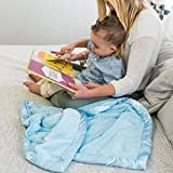 Super Soft Plush Satin Border Baby Receiving Blankets, Light Blue