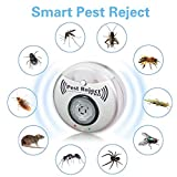 Zoom IMG-2 best direct pest reject pro