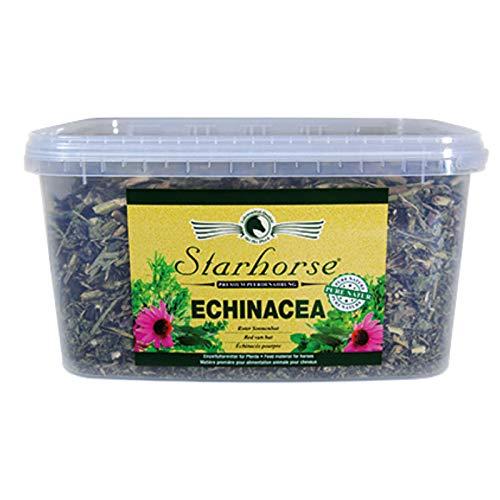 Starhorse Echinacea für Pferde Roter Sonnenhut Immunsystem 750g Eimer