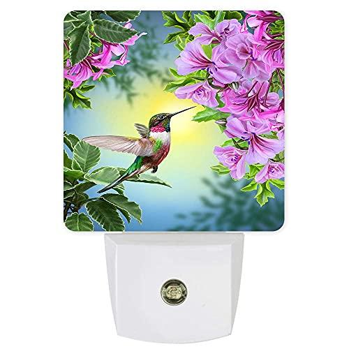 Lámpara LED de noche enchufable con sensor de colibrí impreso para dormitorio, baño, cocina, guardería, pasillo, escaleras, decoración de pared para el hogar, flores rosas