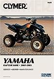 Yamaha Raptor 660R 2001-2003: Service-Repair-Maintenance