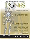 The Bones (Flash Cards)