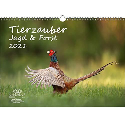 Tierzauber Jagd & Forst DIN A3 Kalender für 2021 - Geschenkset Inhalt: 1x Kalender, 1x Weihnachts- und 1x Grußkarte (insgesamt 3 Teile)