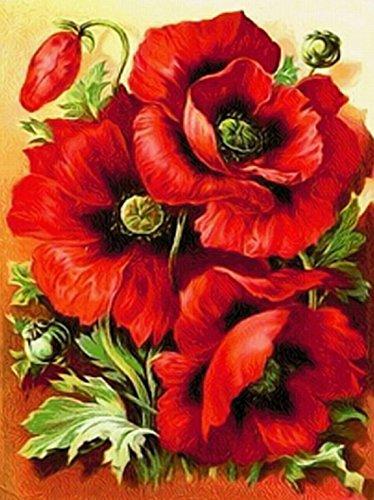 5D-Strassbild zum Besetzen mit Glitzersteinen nach Zahlen,DIY 5D Diamant Painting Rose, FULL Bohrer Blooming Roses, Motiv: Mohnblumen, zum Basteln, Leinwand, Wanddekoration, 25 x 30cm