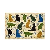 Felpudo de Gato Multicolor de Fibra de Coco Natural de 40x60 cm - LOLAhome