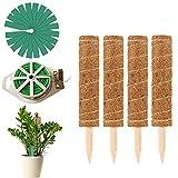 4 Stück 30cm Pflanzstab Kokos Rankstab Rankhilfe Blumenstab mit 20er Pflanzen Etiketten und 65 Fuß...