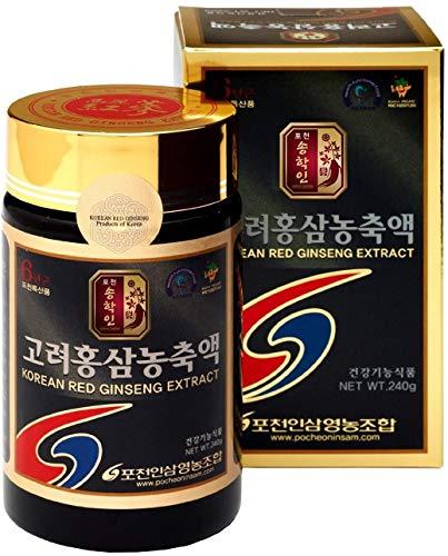 Pocheon 240g Gold 100% Puro Estratto di Ginseng Rosso Coreano Panax, 6 Anni Radice, Top Ginsenoside, Saponina