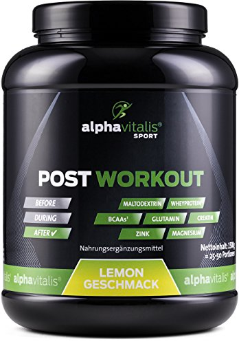 POST WORKOUT Shake mit Maltodextrin, Whey Protein, BCAA, Creatin, L-Glutamin, Magnesium uvm. - 1500g Lemon- Die wichtigsten Nährstoffe nach deinem Workout! (Lemon, 1500g) EINWEG