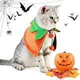 Dorakitten Halloween Haustier Kostüm, 2 PCS Halloween Katzenkostüm Haustier Halloween Umhang mit Kürbis-Hut,Halloween Kürbis Kostüme für Katze (Beidseitig)