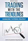Trading Strategy. Forex, Stocks, Futures, Commodity, CFD, ETF. Trading with the Trendlines - Harmonic Patterns Strategy (English Edition)