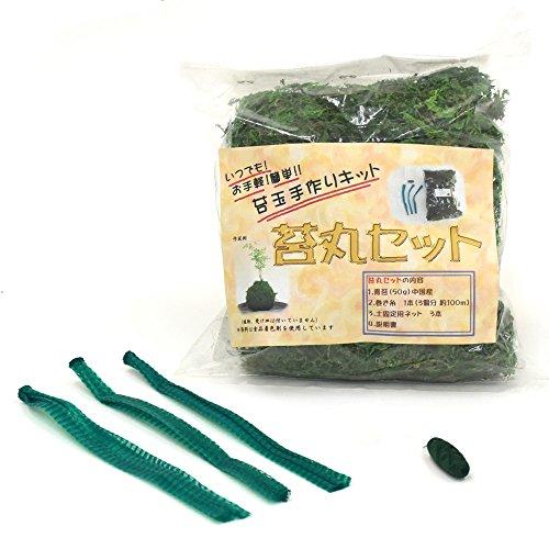 誰でも簡単アレンジこれさえあれば可愛いオリジナル苔玉が作れちゃうお手軽手作り苔玉キット 苔丸4点セット