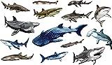 WIRESTER Decal Vinyl Wall Sticker Decoration for Home Office Living Room Wall Bathroom Toilet, Great White Shark, Hammerhead Shark, Bull Shark, Whale Shark, Blue Shark, (14 Sharks) Set