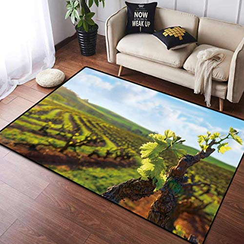 Home Decor Doormat Floor Mat Area Rug Carpet, barossa Valley Vineyard seppeltsfield South Australia, for Living Room Kids Room Home Decor Rugs Mat, 4' x 6'