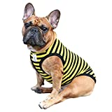 IChoue Sleeveless Dog Vest