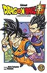 Dragon Ball Super - Tome 12 par Toriyama