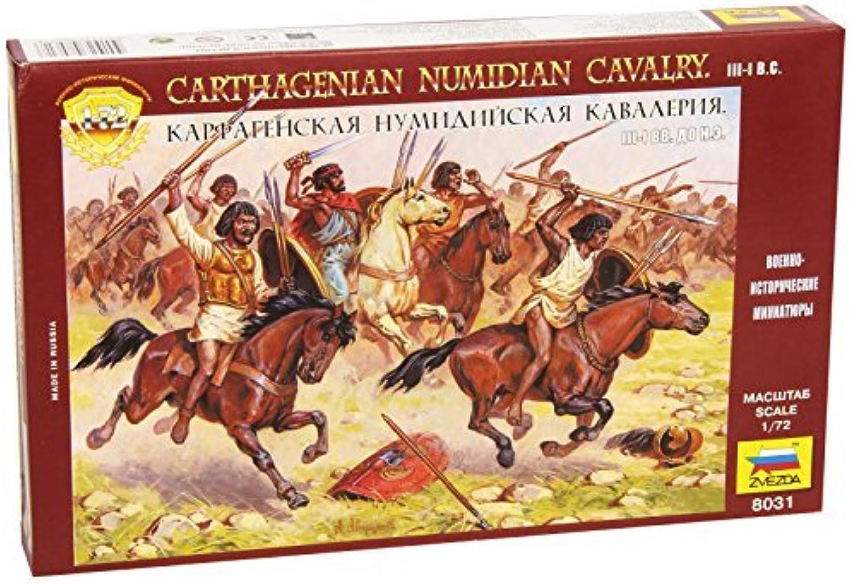 Carthaginian Numidian Cavalry (17 Mounted) 1 72 Zvezda by Zvezda