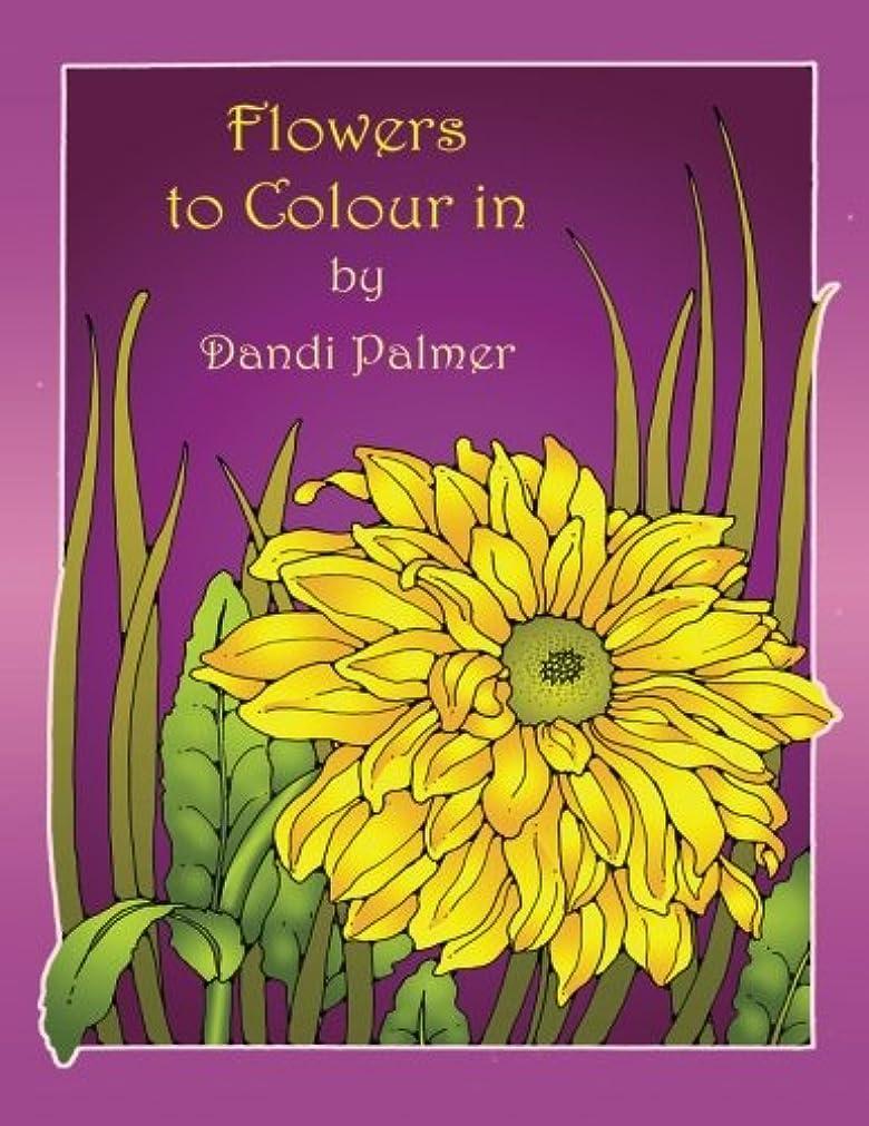 改革やるかもめFlowers to Colour In (Coloring Books)