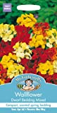 Mr Fothergill's 11061 Flower Seeds, WallFlower Dwarf Bedding Mixed