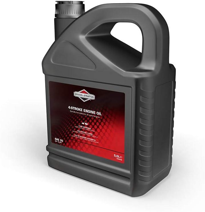 Briggs Stratton 100009e Sae30 Öl 5 0 Liter Baumarkt