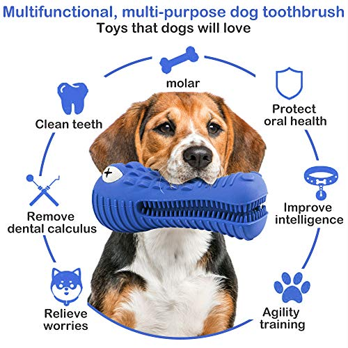 chew brush for dogs