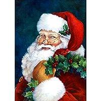 大人のためのクリスマスギフト5D DIYダイヤモンドの刺繍サンタクロースクロスステッチキットアートギフト絵画サンタダイヤモンド B